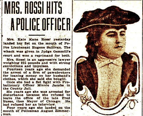 Picture of article about Kate Kane Rossi hitting  a police officer.